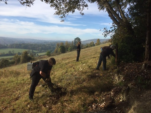 The Bench: Volunteering on Denbies Hillside.