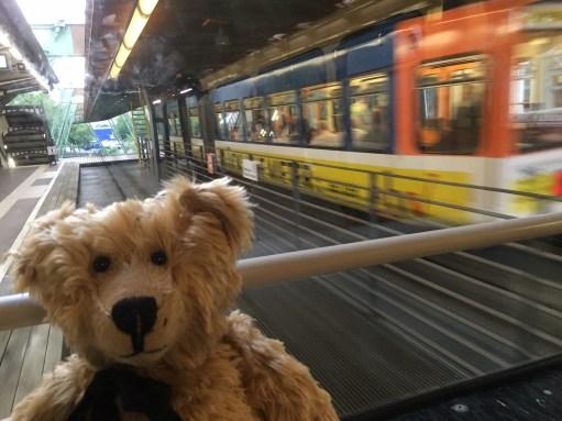 Germany: Enjoying the ride.