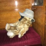 Bertie asleep on a railway carriage seat with Bobby's hat over his face!