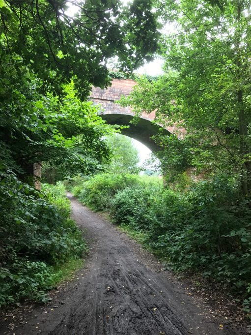 Wintershall Manor: Downs Link Cycleway. Disused railway line.