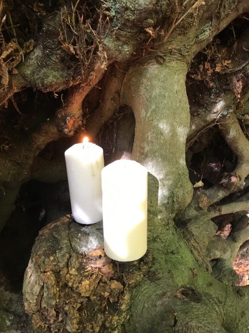 Ties: Lighting a Candle for Diddley - Under the Witches Broom tree.