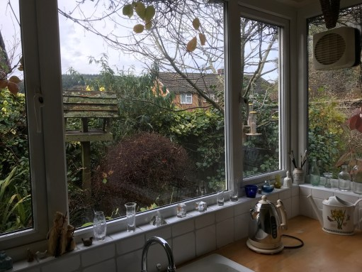 The Kitchen Window: The view of the Bird Table and Feeders.