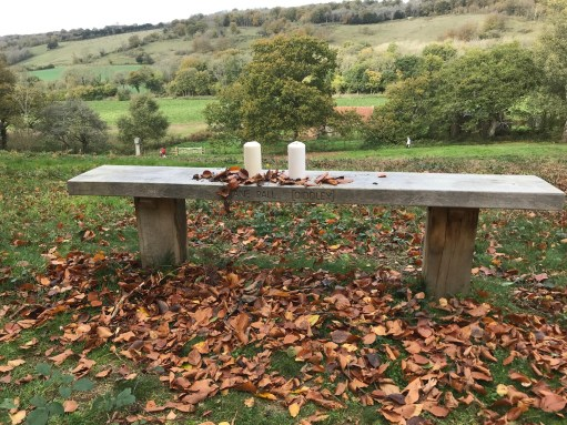 Bench: Remembering Amber and Diddley.