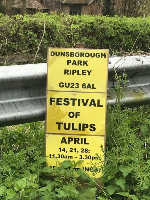 Dunsborough Park Gardens: Festival of Tulips Poster.