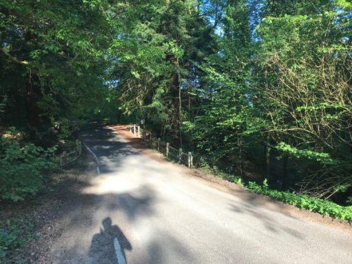 Frank's Walk: Repaired road.