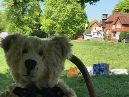 Tedd Bears' Picnic: Here's the green. Not many here yet. Get in the shade for the day.