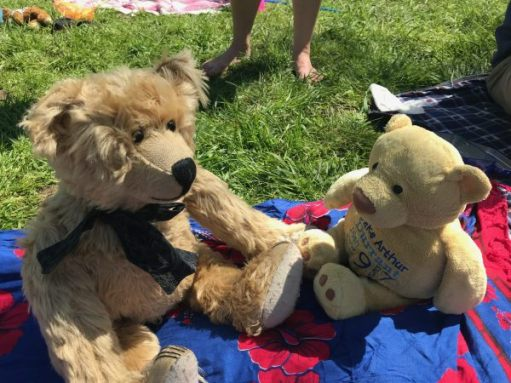 """Teddy Bears' Picnic: """"You're sweet. But is that your name, or your owners?"""""""