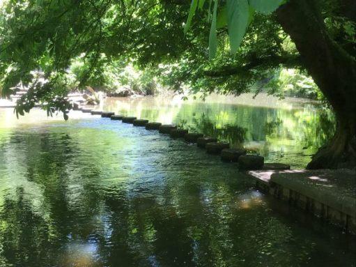 Halcyon Days: The Stepping Stones across the River Mole at Dorking.