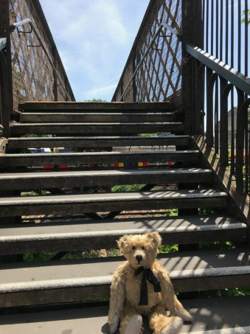 The Footbridge: Seem to be sitting on a lot of steps lately. Half way down (or up).