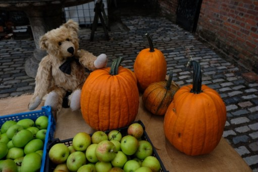 Dahlia Day: 'Ere Bobby - howabout we run a Market Stall - Get yer loverly apples here!...