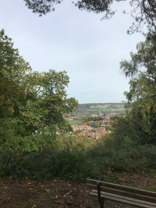 Over the Hills and Far Away: North from the summerhouse towards Boxhill in the background.