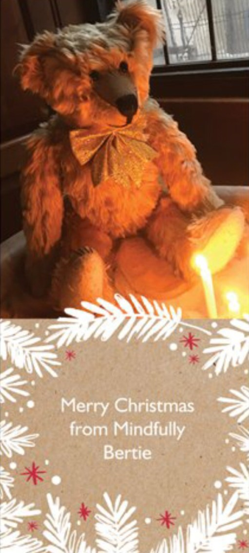 Merry Christmas from all at Mindfully Bertie!