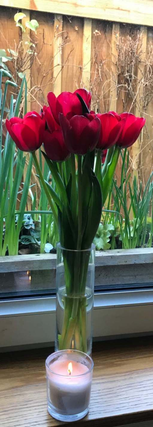 Lighting a Candle for Diddley in Laural Cottage with the tulips.