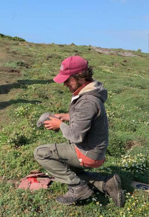 Richard with a baby Shearwater.