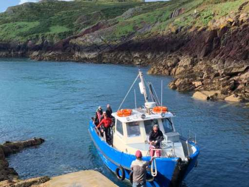 New, excited visitors arriving at Skokholm on the Dale Princess.