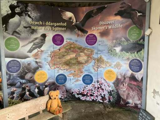 Large display with Eamonn sat in front: Discover Skomer's Wildlife.