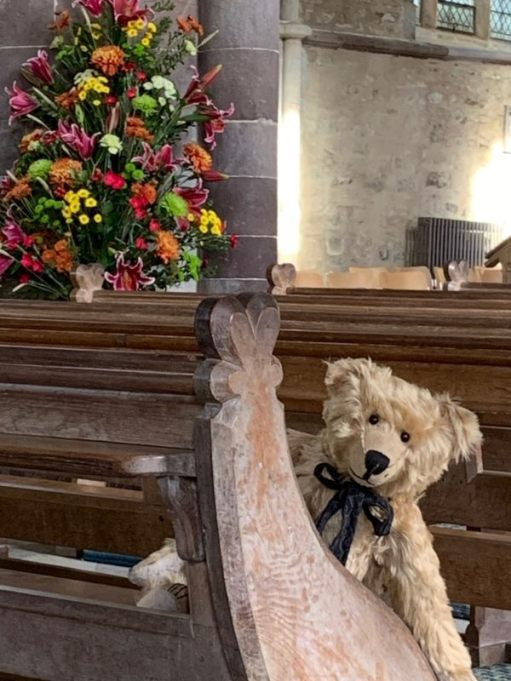 Close-up of Bertie in the pew.