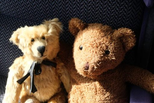 West Somerset Railway - Bertie sat next to another bear on the train.