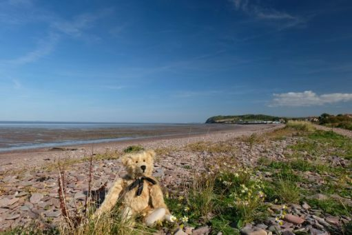 Bertie on the beach on the way to Blue Anchor. Wales across the bay in the distant horizon.