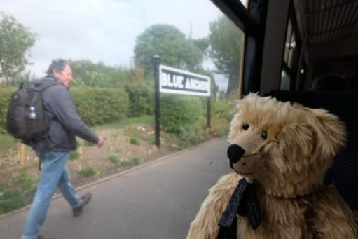 West Somerset Railway - Bertie sat in a carriage by the window at Blue Anchor Station.