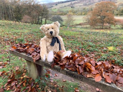 Bertie sat on Diddley's Bench. Both are covered in autumn leaves!