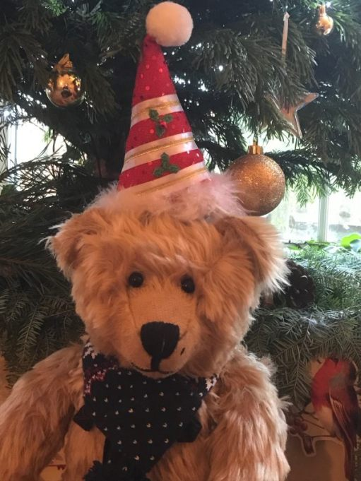 Bertie in a festive hat in front of the Christmas Tree.