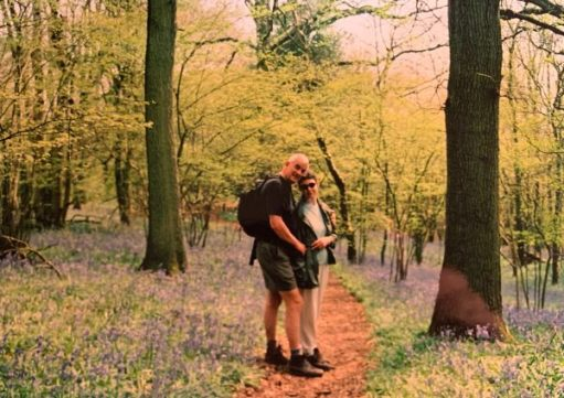 Bobby & Diddley walking through a bluebell wood.