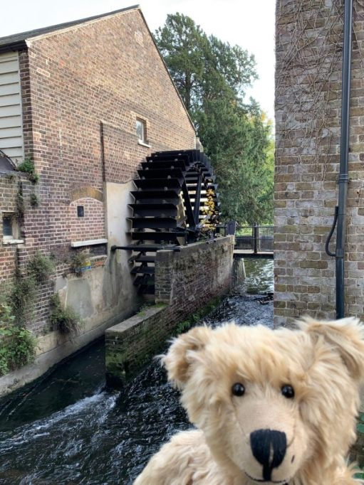 Bertie in front of the old Snuff Mill, with the cosmetically restored water wheel behind.