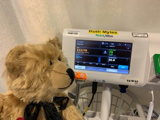 Bertie studying the readout on the blood pressure machine.