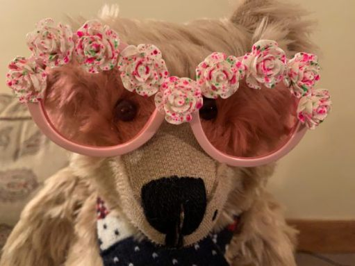Bertie wearing pink glasses, with flowers over the top rims.