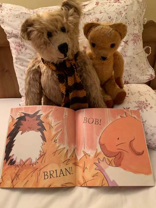 "Bertie and Eamonn studying a page of the book ""My Best Friend, Bob"". There is a picture of two animals, one called Brian, the other called Bob."