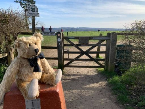 Bertie sat on a stone donations box. Steer's Field is behind with Greensand Ridge in the distance.