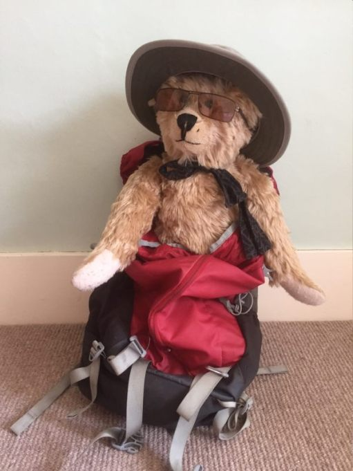 Bertie in the rucksack wearing sunglasses and a hat.