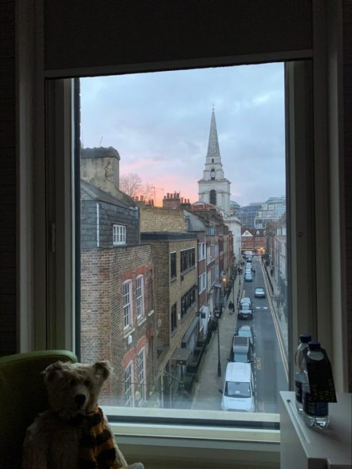 Bertie in the window of room 311, with the view of the sunset over Fournier Street to Christ Church and Spitalfields.