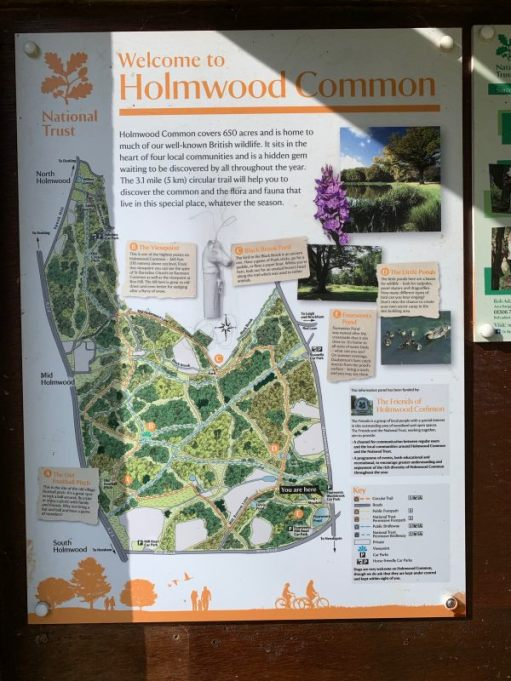 Holmwood Common Map and Information Board.
