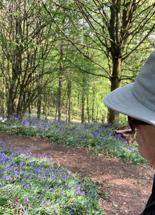 Bobby looking out over the Bluebell Woods.