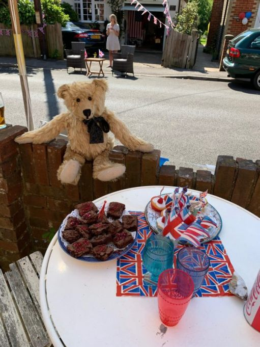 Bertie sat on the fence looking at a delicious plate of Chocolate Brownies.