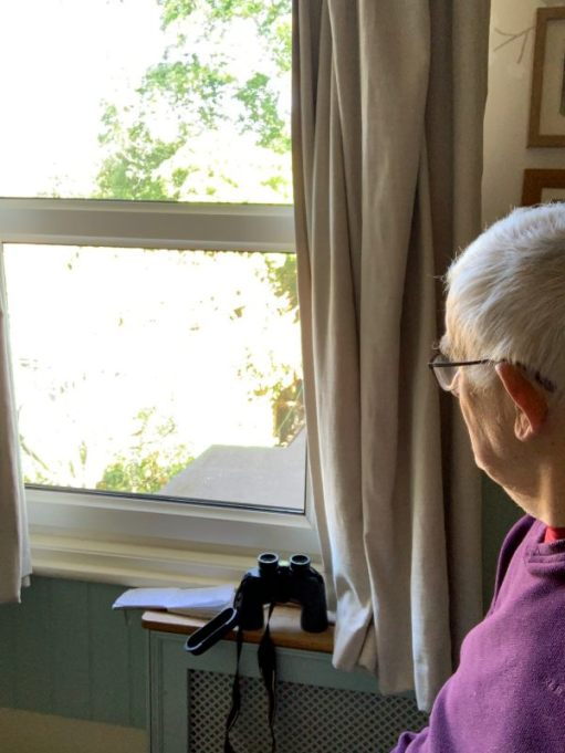 Bobby sitting in a chair looking out of the window at Laurel Cottage ready for his Birdwatch.