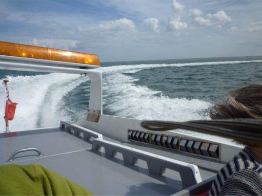 "Down to the speedboat ""Velocity""."