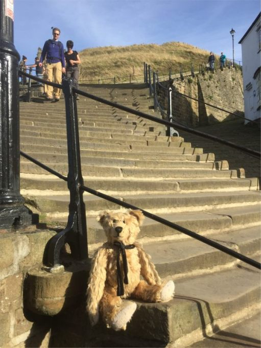 Bertie on the 199 steps up to Whitby Abbey.