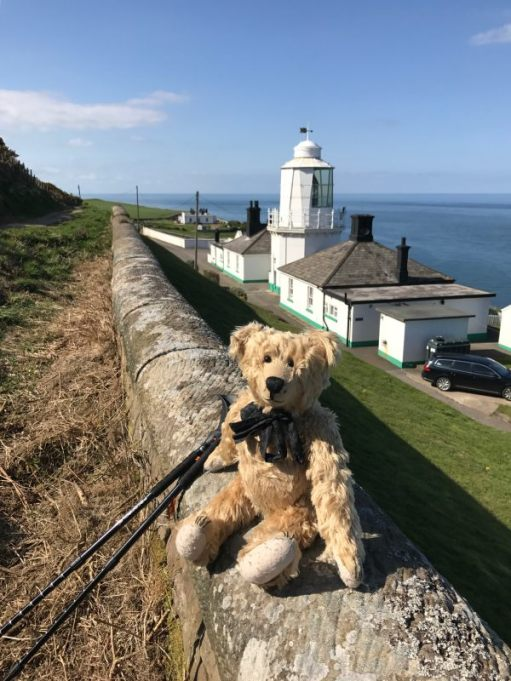 Bertie sat on a wall in front of Whitby Lighthouse.