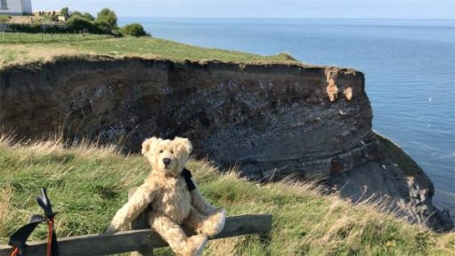 Bertie sat on the cliffs.