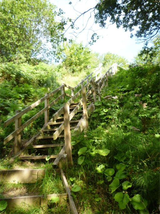 Looking up the narrow pathway steps at Hayburn Wyke.