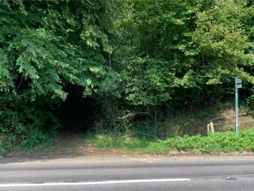 Look across the road and you will see the footpath leading uphill back to the Roughs. Take great care crossing the road.