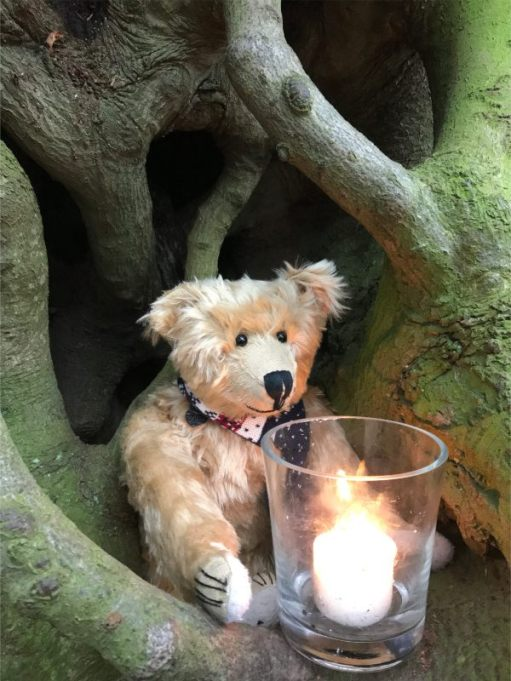 Bertie and a Candle Lit for Diddley at the Witches Broom Tree.