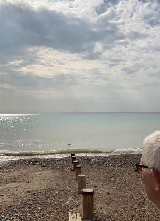 Bobby looking out to sea down the line of the groyne at East Preston. A pebble beach leading to a calm, blue sea.