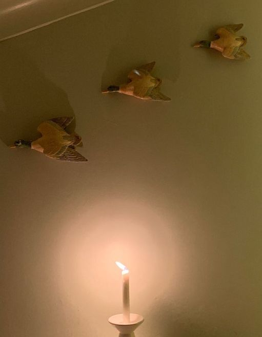 A candle lit for Diddley against a wall that has three flying ducks on it.