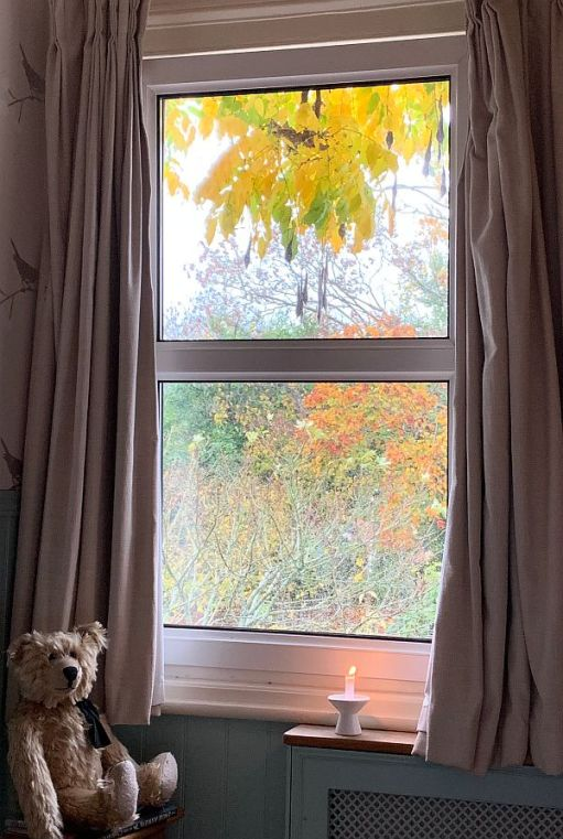 Bertie at the autumn window, with a candle lit for Diddley.