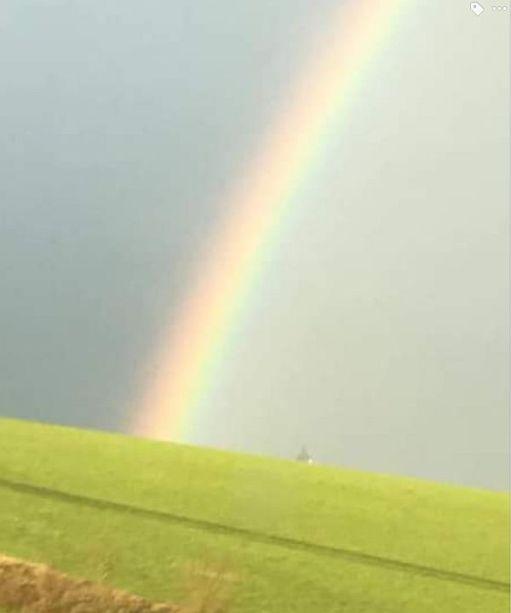 Rainbow and Groyne.