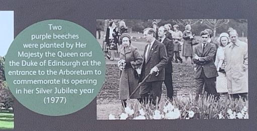 """Plaque depicting the opening of the Jubilee Gardens: """"Two purple Beeches were planted Her Majesty The Queen and the Duke of Edinburgh at the entrance to the Arboretum to commemorate its opening in her Silver Jubilee Year (1977)."""